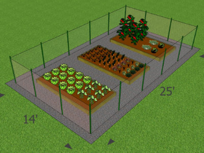 picture of garden concept